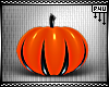 -P- Pumpkin Pets 3