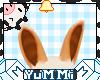 Honey Milk Bun Ears