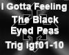 I Gotta Feeling Pt1 TBEP