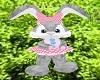 Cute easter grey bunny