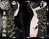 (MI) Black Roses Hips