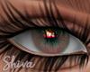 $ Lola Hazel Eyes