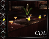 !C* Seattle Bar