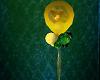 EG Rotating Balloons