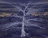 Winter Lit Tree DRV
