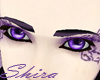 Passion Violet Brows