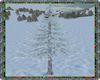 ⚡ Winter Pine