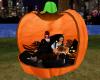 3 Cuddle Pumpkin