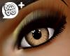 IMVU+ F Eye Brn 0
