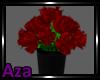 Kitty's Rose Vase