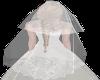 Classical crown veil