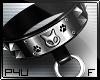 -P- Studs Kitty Collar F
