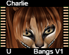 Charlie Bangs V1
