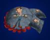 Hugh Neutron Cushions