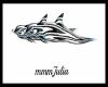 Zebra Dolphins