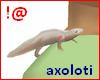 !@ Axoloti