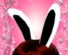 Bunny Ears Animated