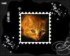 Cat Stamp 14