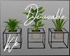 [kk] DERV. Plants 02