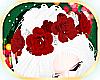 [NNN] Holiday Crown ❤