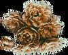 Brown Flowers -R