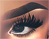 I│Tracy Brows Blk 2