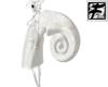 ~F~ White Snail Shell