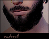 Hamett Req Beard.