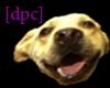 *dpc dog mask