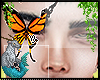♑| Monarca animated