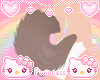 ♡ puppy tail cocoa