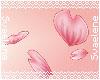 Sakura Petals