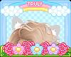 ・゚✧ Cat Ears