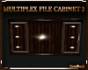 MULTIPLEX FILE CABINET 2