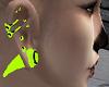 Raver Piercings n Plugs