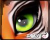 z Domi F/M Eyes