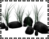 Rocks & Weeds