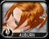 'cp MASAE Auburn