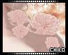 :0: Shae Flowers