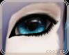 + Veil | Eyes