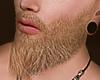 ▒AC Lartıs Beard