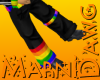 Rainbow Cargos