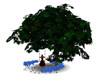 Romantic tree swing