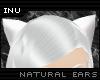 [I] White Fox Ears