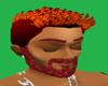 LADY GATA'S RED BEARD