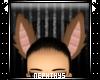 + Momo ears +