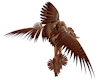 Red Tail Hawk Arm Wings