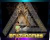 ~LF~ ANIMATED BRAZILDOME