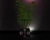 ~DES~ Bamboo Plant