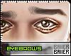 Curious Eyebrows